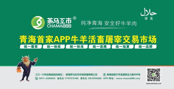青海万博matext手机互市市场管理有限公司简介